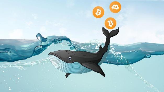 """真实数据:比特币新高之前""""巨鲸""""已开始倾销,抛售超93000枚BTC"""